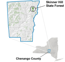 Skinner Hill State Forest locator map
