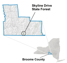 Skyline Drive State Forest locator map