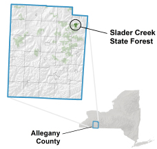 Slader Creek State Forest locator map