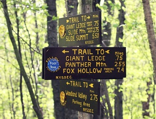 Trail sign from the intersection of the Giant Ledge- Panther Mountain- Fox Hollow Trail and the Phoenicia East Branch Trail