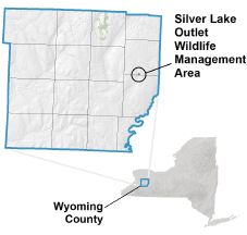 Silver Lake Outlet WMA locator map