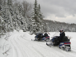 Snowmobiles on a snowy trail