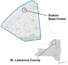 Sodom State Forest Locator Map