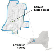 Sonyea State Forest locator map