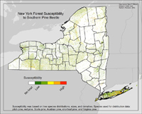Map of forest susceptibility to Southern Pine Beetle.