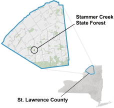 Stammer Creek State Forest Locator Map