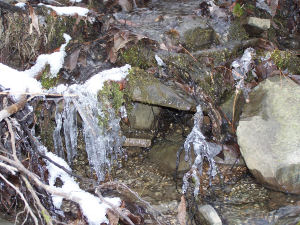 Close up of small creek with snow and ice on the rocks and moss.