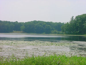 Sanford Lake on Birdseye Hollow