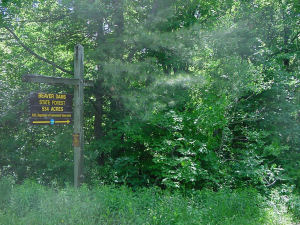 Area sign for Beaver Dams State Forest