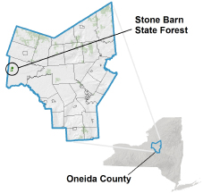 Stone Barn State Forest locator map