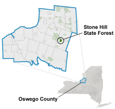 Stone Hill State Forest locator map