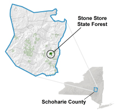 Stone Store State Forest locator map