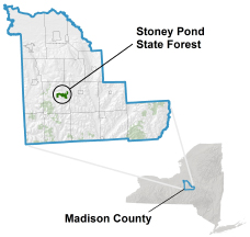 Stoney Pond State Forest locator map