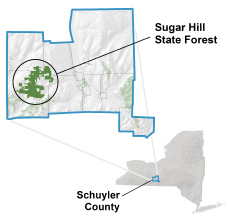 Sugar Hill State Forest locator map