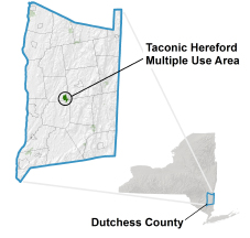 Taconic Hereford Multiple Use Area locator map