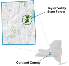 Taylor Valley State Forest locator map