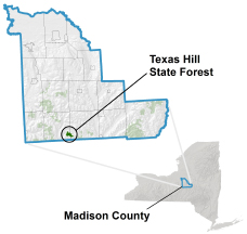Texas Hill State Forest locator map