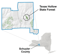 Texas Hollow State Forest locator map