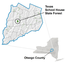 Texas School House State Forest locator map