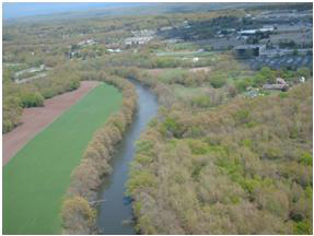 Aerial view of a river with trees growing along the water