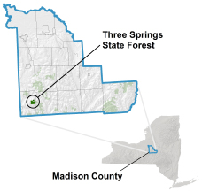Three Springs State Forest locator map