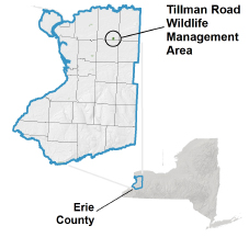 Tillman Road WMA locator map