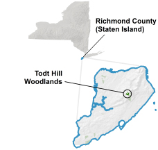 Todt Hill Woodlands locator map