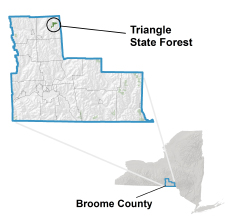 Triangle State Forest locator map