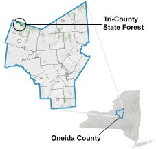 Tri County State Forest locator map