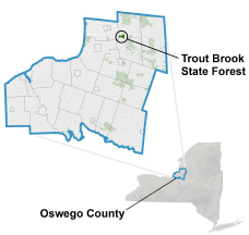 Trout Brook State Forest locator map