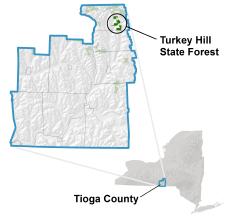 Turkey Hill State Forest locator map
