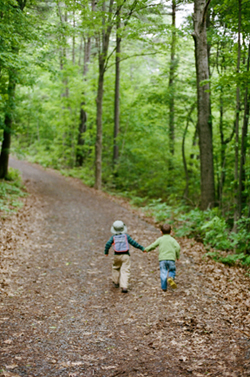 Two children walking down a path through the woods