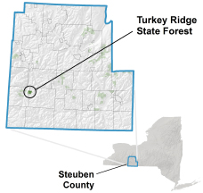 Turkey Ridge State Forest locator map