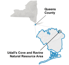 Udall's Cove Locator Map