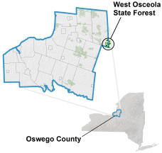 West Osceola State Forest locator map