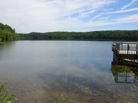 A view of White Pond