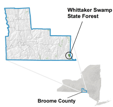 Whittaker Swamp State Forest locator map