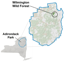 Wilmington Wild Forest locator map