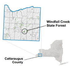 Windfall Creek State Forest locator map