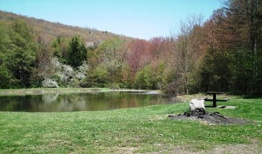 Windfall Pond