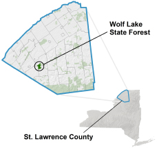 Wolf Lake State Forest locator map