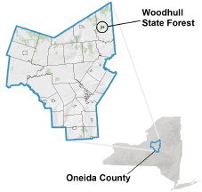 Woodhull State Forest locator map