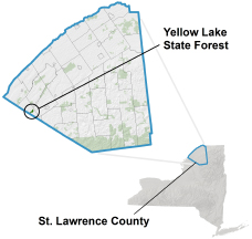 Yellow Lake State Forest locator map