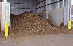 photo of a compost facility