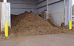A municipal compost pile
