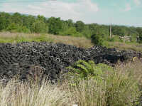 Stockpile of Tires in a field of tall grass