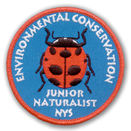 Jr Naturalist Patch 2001, Lady Bug, the State Insect
