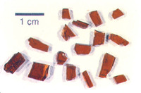 Polished chips of garnet from the Barton Garnet mine showing dark red color and gemstone qualities.