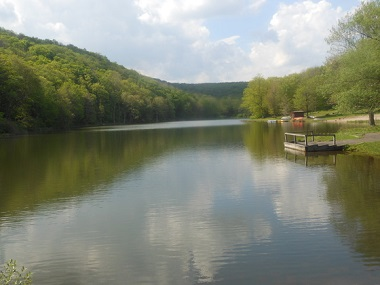 Bear spring mountain campground day use area nys dept for Ny dec fishing license