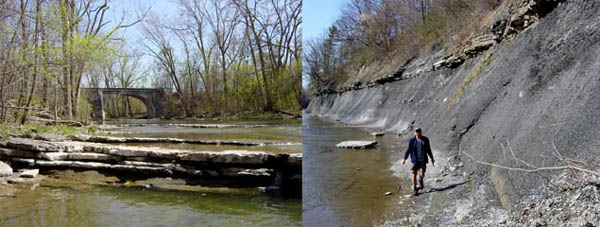 Buffalo Creek at Bullisi Road - Tichenor Limestone (left photo); lower part of the Moscow Formation (right photo)